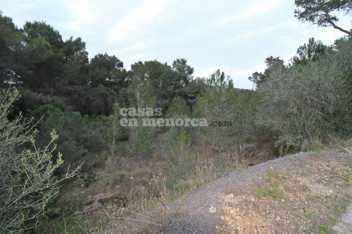 Plot for sale in Cala Moli, Addaia - Ref. 3005