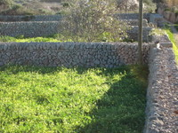 For sale - Ref. 6020 Plot - Sant Lluís (S'Uestra)
