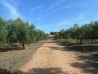 For sale - Ref. 2360 Country house - Ciutadella (Ciutadella (surrounding areas))